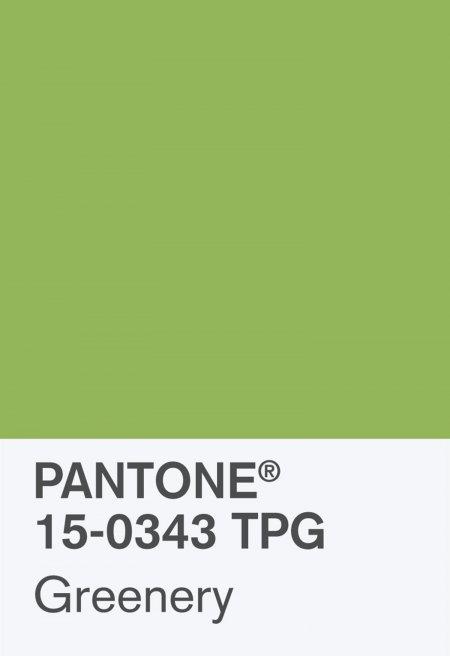 pantonechip 15 0343 tpg greenery