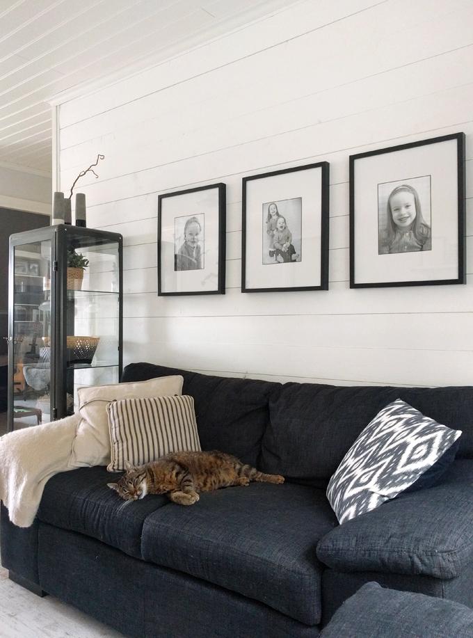 sovande katt tvrum