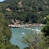 Angel Island Tiburon Bay Area Sailing Boats CA By Miss P